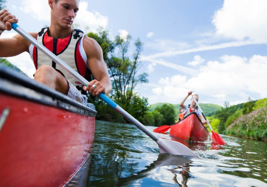 Our Kayak Boat Tour is Just for You